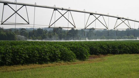 Know the Where and When of Irrigation